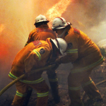 Fighting the 2003 fires